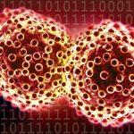 carcinoma là gì