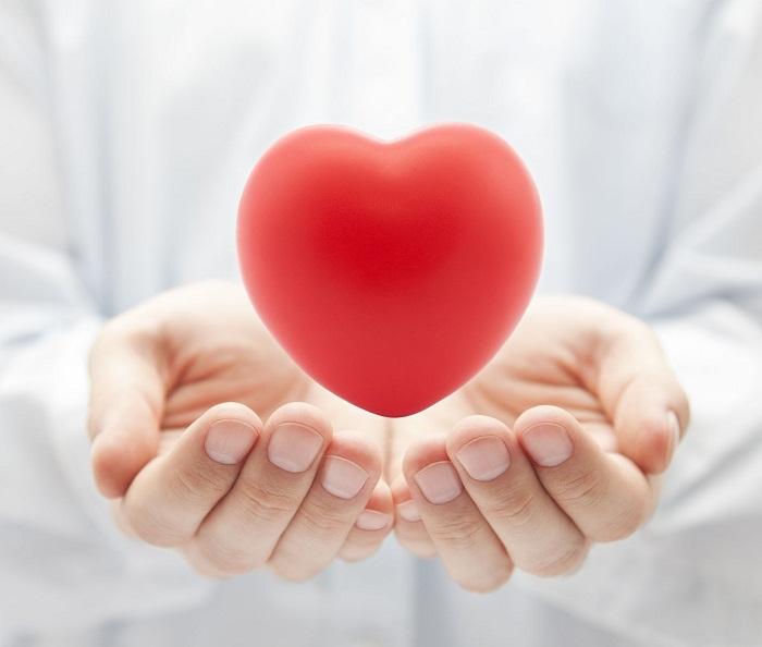 hệ tim mạch khỏe mạnh
