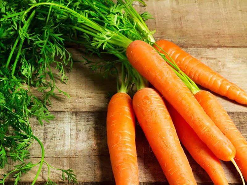 Carotchứa một lượng lớnvitamin A, cùng vớibeta- carotene