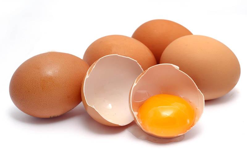 Trứng giúp tăng cân 1 cách hiệu quả nhất