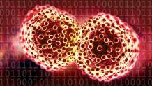 Carcinoma là gì – Cách chuẩn đoán bệnh sớm ra sao