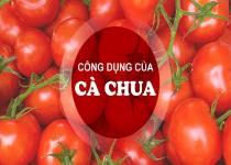 8 Công dụng không ngờ của cà chua đối với sức khỏe