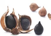 Tỏi đen là gì? Công dụng và cách làm tỏi đen tại nhà