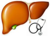 Xơ gan – Nguyên nhân, triệu chứng và cách điều trị